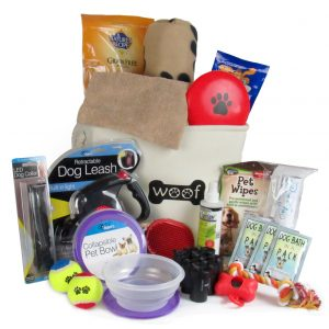 Dog Accessories Online
