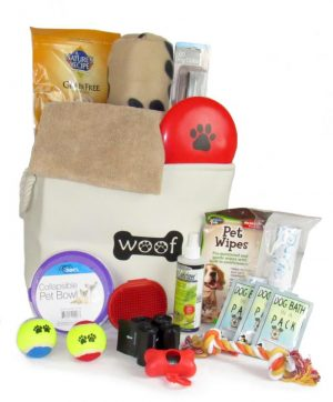 Best Gift Baskets For Dog Lovers Online
