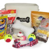 Toys and Treats Doggy Gift Baskets