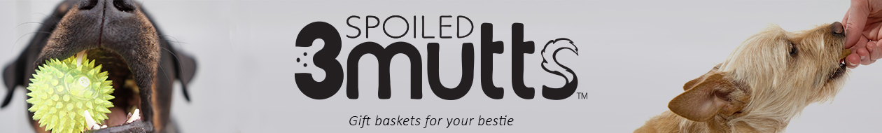 3 Spoiled Mutts Header